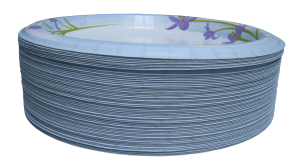 Paper_plates_-_isolated